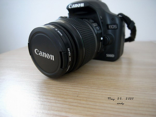 Canon EOS 500D (Flickr by sindykids)