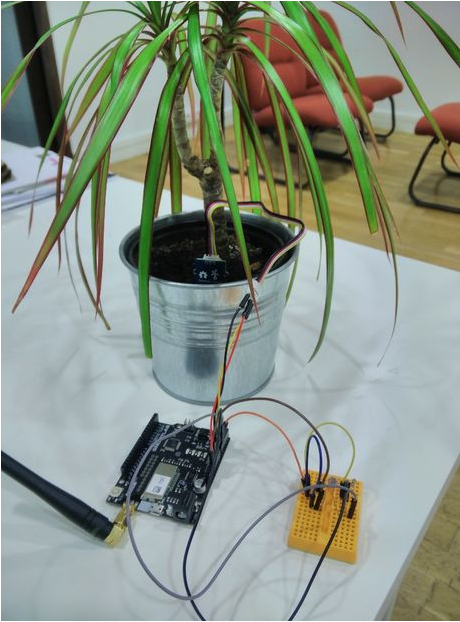 thethingsio-connected-plant